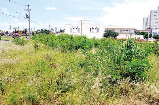 Limpeza de terrenos: município notifica 2.617 em 2017