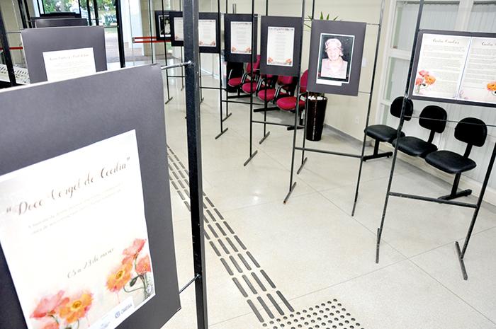 Câmara conta história de Cecília Quadros