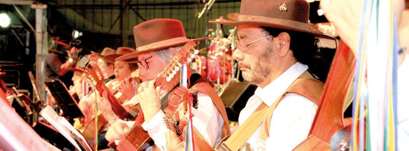 VIOLA CAIPIRA: Limeira vai receber orquestra paulistana